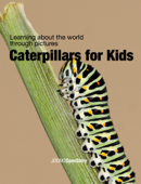 Caterpillars for Kids