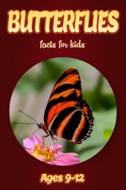 Butterfly Facts For Kids 9 12
