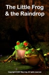 The Little Frog  The Raindrop