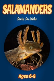 Facts About Salamanders For Kids 6 8