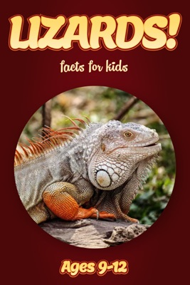 Lizard Facts For Kids 9-12