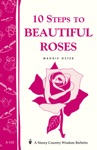 10 Steps To Beautiful Roses