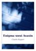 Enigma Unui Asasin - Claudio Ruggeri
