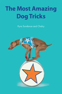 The Most Amazing Silly Dog Tricks Book Cover