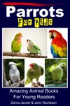 Parrots For Kids Amazing Animal Books For Young Readers