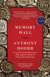 Memory Wall PDF Download