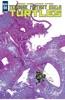 Teenage Mutant Ninja Turtles #54