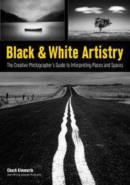 Black & White Artistry