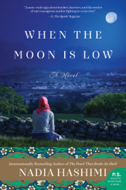 When the Moon Is Low book