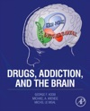 Drugs Addiction And The Brain Enhanced Edition