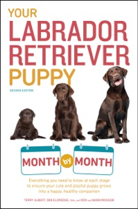 Your Labrador Retriever Puppy Month by Month, 2nd Edition Book Cover