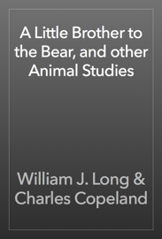 A Little Brother to the Bear, and other Animal Studies book