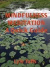 Mindfulness Meditation A Quick Guide