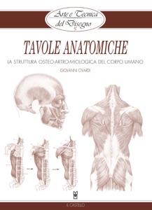 Arte e Tecnica del Disegno - 15 - Tavole anatomiche da Giovanni Civardi