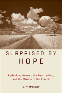 Surprised by Hope Summary