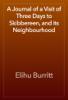 Elihu Burritt - A Journal of a Visit of Three Days to Skibbereen, and its Neighbourhood artwork