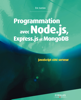 Éric Sarrion - Programmation avec Node.js, Express.js et MongoDB artwork