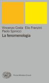 La fenomenologia Book Cover