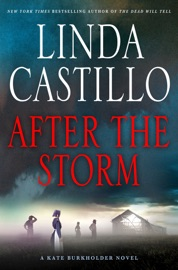 After the Storm PDF Download