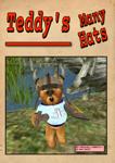 Teddy's Many Hats