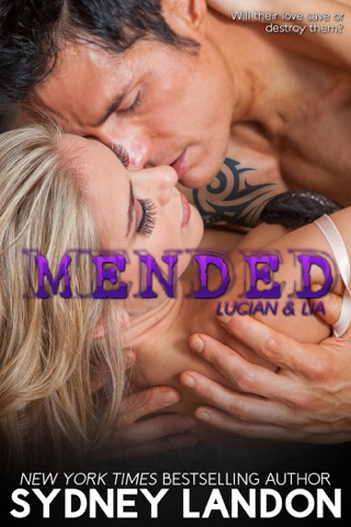Mended PDF Download