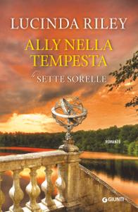 Ally nella tempesta Copertina del libro