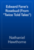 Nathaniel Hawthorne - Edward Fane's Rosebud (From