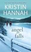 Angel Falls Book Cover