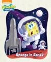Sponge In Space SpongeBob SquarePants