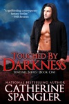 Touched By Darkness  An Urban Fantasy Romance Book 1 The Sentinel Series