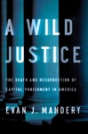 A Wild Justice The Death And Resurrection Of Capital Punishment In America