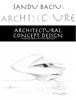 Sandu Baciu - Architectural Concept Design  artwork
