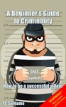 A Beginners Guide To Criminality How To Be A Successful Villain