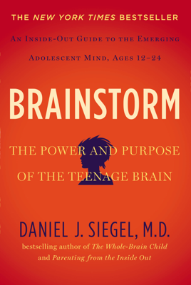 Brainstorm - Daniel J. Siegel, MD book