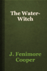 J. Fenimore Cooper - The Water-Witch artwork