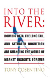Into The River How Big Data The Long Tail And Situated Cognition Are Changing The World Of Market Insights Forever