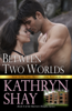 Kathryn Shay - Between Two Worlds  artwork