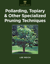 Pollarding, Topiary & Other Specialized Pruning Techniques