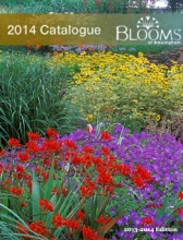 Blooms Of Bressingham Plants For 2014