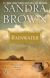 Rainwater PDF Download