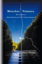 Mouches Volantes: Eye Floaters As Shining Structure Of Consciousness