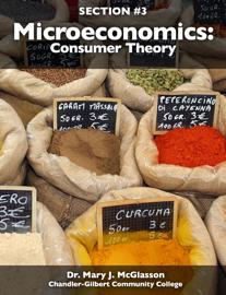 Microeconomics: Consumer Theory book