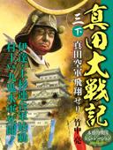 真田大戦記 三 下 真田空軍飛翔せり Book Cover