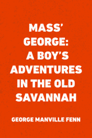 Mass' George: A Boy's Adventures in the Old Savannah