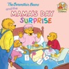 The Berenstain Bears And The Mamas Day Surprise