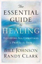The Essential Guide to Healing book