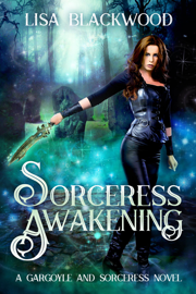 Sorceress Awakening book