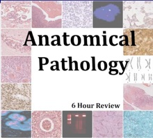 Anatomical Pathology Comprehensive Review With Color Slides; Anatomy And Pathology