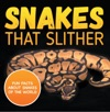 Snakes That Slither Fun Facts About Snakes Of The World