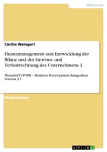 Finanzmanagement Und Entwicklung Der Bilanz Und Der Gewinn- Und Verlustrechnung Des Unternehmens 3